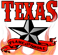 Texas Flame and Smoke Logo